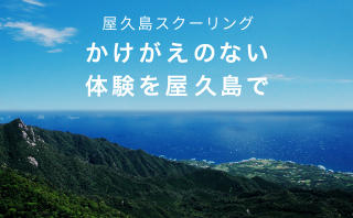 屋久島スクーリング かけがえのない体験を屋久島で