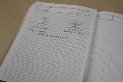 活動内容や農作物の絵を描いたみらいノート