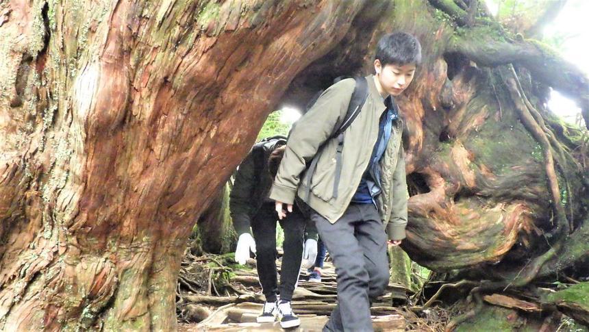 屋久島散策中