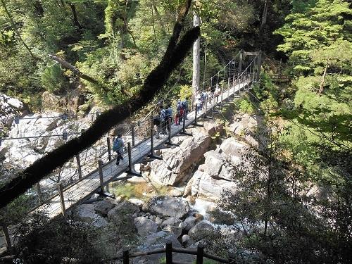 吊り橋からの景色もいい!